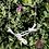 Thumbnail: Fine Silver Dragonfly Garden Dance Necklace