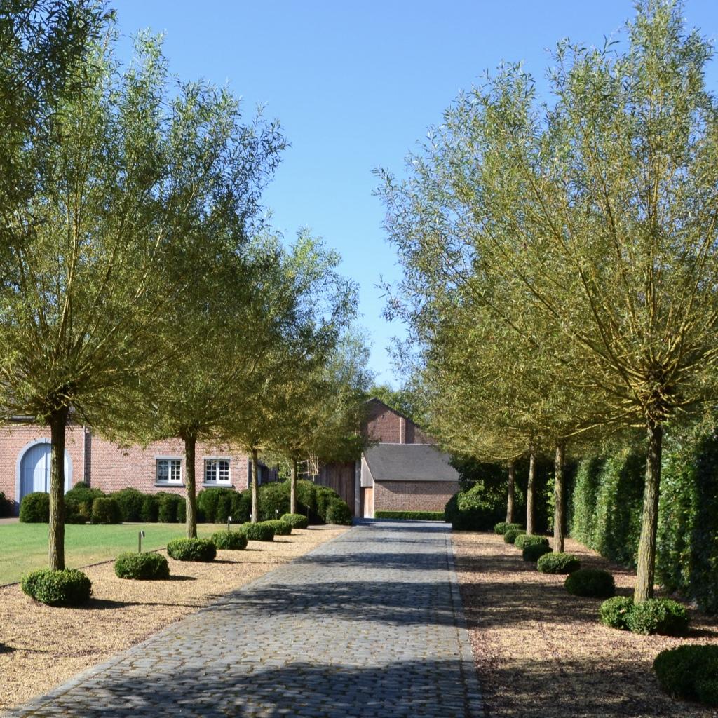 Landelijke tuin Mol