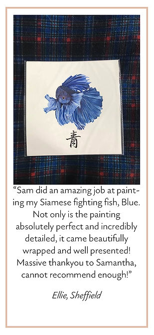 Blue Review.jpg