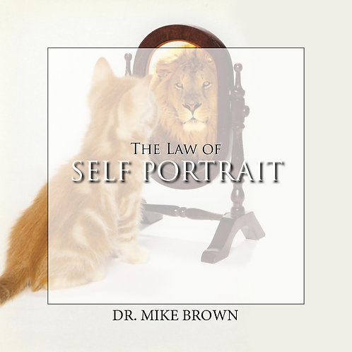 Download - Law of Self Portrait