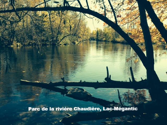 Chaudière_8_edited.JPG