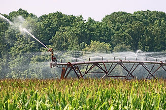 farm-4421270_1920.jpg