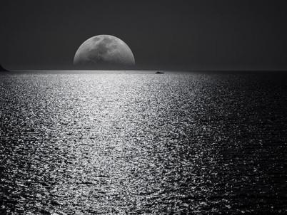 Rezension: Nichts, was man fürchten müsste - Julian Barnes
