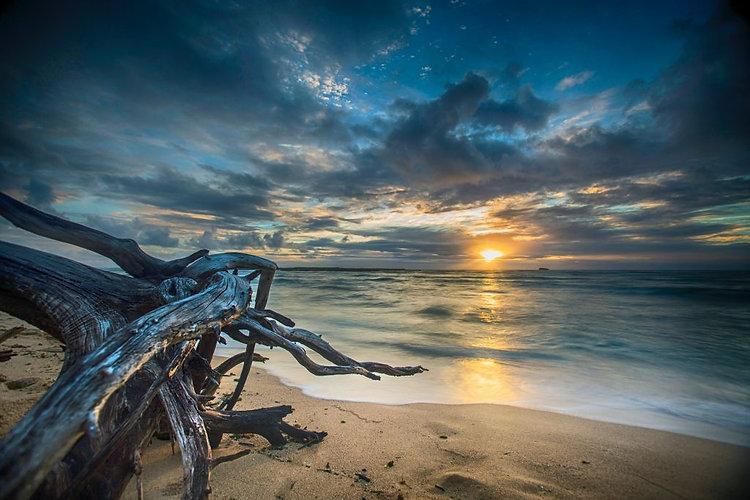 beach-dawn-dusk-292442-1024x683.jpg