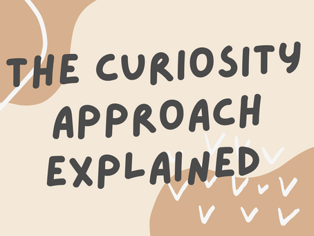 The Curiosity Approach Explained