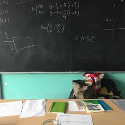 Liceo Einstein