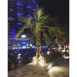 Dubai nights ❤️