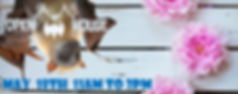 open house 2019 wix banner.jpg