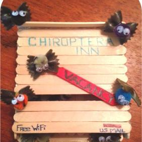 Mini Bat House Craft