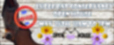 open house 2020 wix banner.jpg
