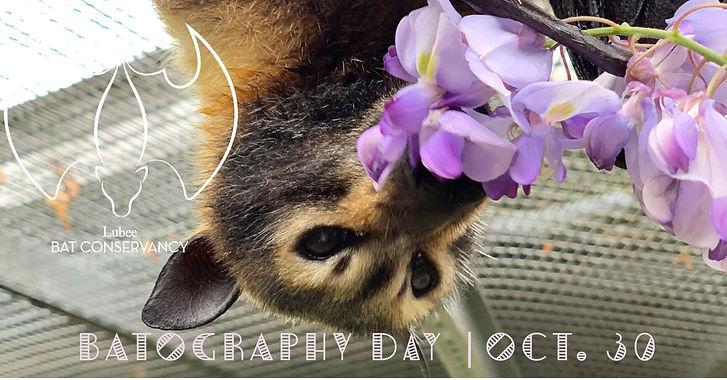BATography Day 2021.jpg