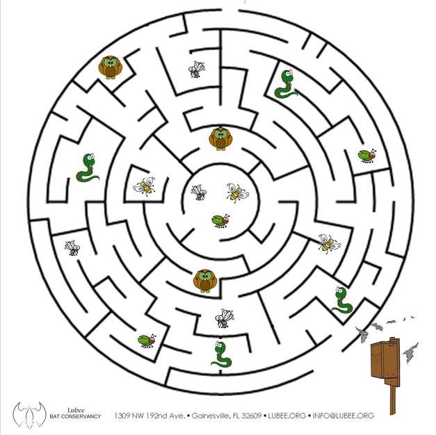 Buggy Circle Maze