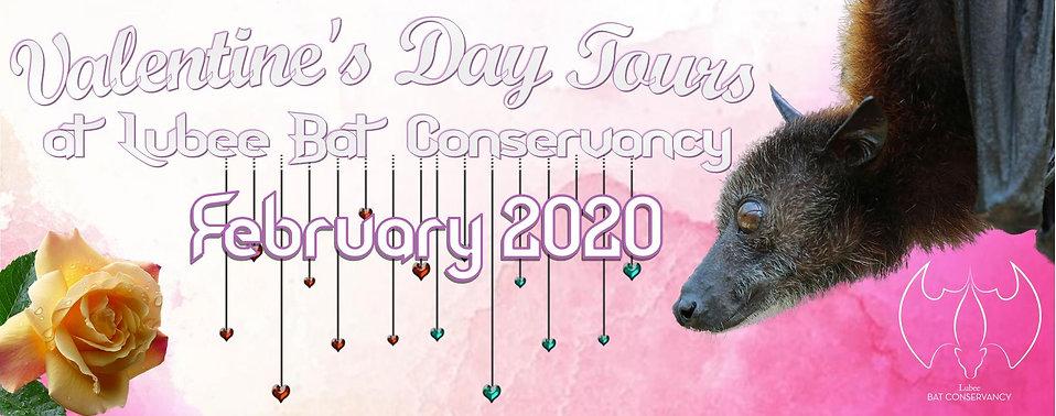 2020 Valentines Day wix banner.jpg