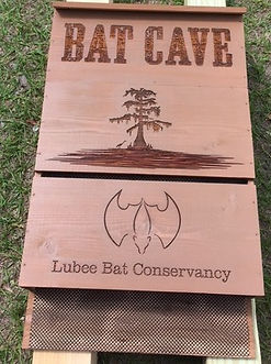 bat house swamp head.jpg