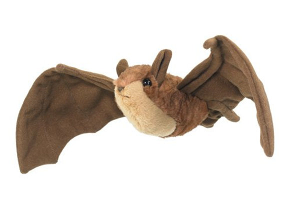 Big Brown Bat or Mexican free-tailed Bat