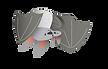 0cute-bat-character-vector-illustrationA