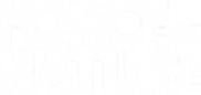 Logotype_whiteAsset 6@2x.png