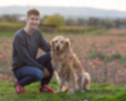 Felix Reber Tierfotografie Heilronn und Golden Retriever Hund Rocky