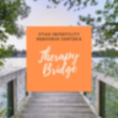 therapy bridge.jpg