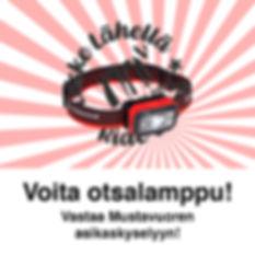 VoitaOtsalamppuFB-01.jpg