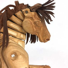 Golden-Pony-_5515-web.jpg