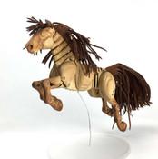 Golden-Pony-_5474-web.jpg