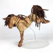 Golden-Pony-_5497-web.jpg