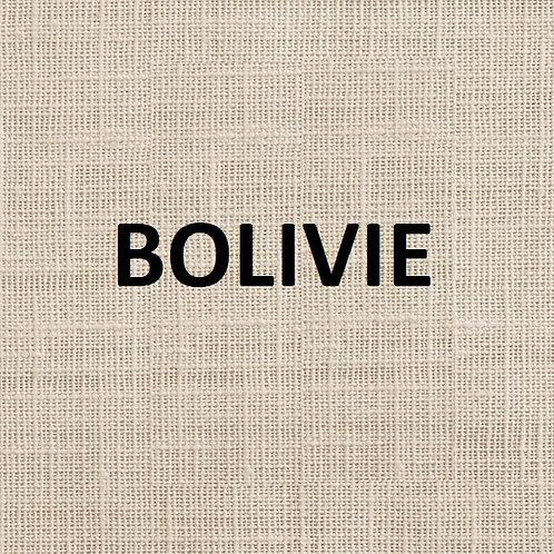 Bolivie Victor Kalla Bio 1kg