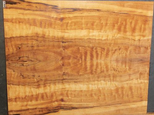 Spalted Maple Guitar Top Set 8817