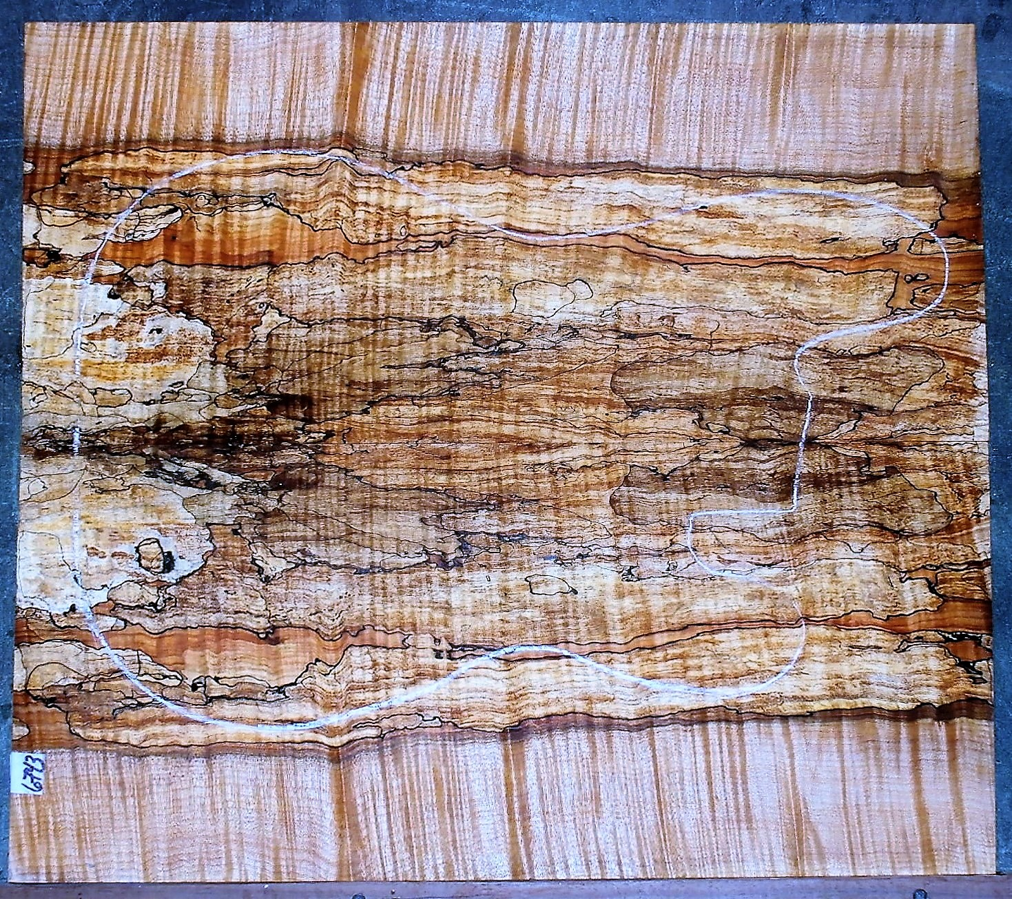 Spalted Curly Maple #6743