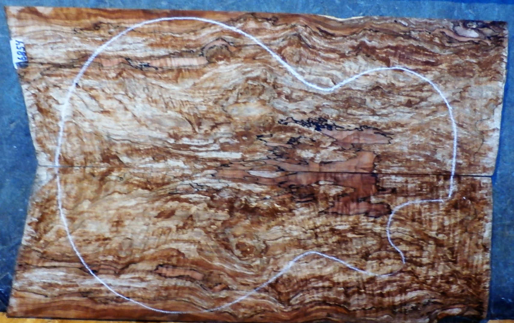 Spalted Curly Maple 6854