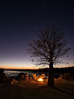 Kimberley Coastal Camp Sun Set with Boab.jpg