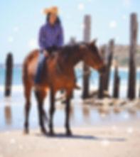 Port Willunga Beach Rides, Souh Australia