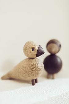 FONDAVO birds