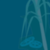 Mokihana Maldonado Logo, with district 41, wheels and cane plant, aded to dark blue