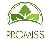 PROMISS+Logo_edited.jpg