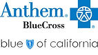 ANTHEM-BLUE SHIELD.jpg