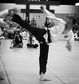 Martial Arts Martial Arts Burlington Adult Martial Arts Adult Martial Arts Burlington  Tae Kwon Do Tae Kwon Do Burlington