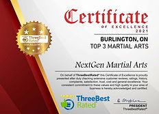 nextgenmartialarts-burlington.jpg