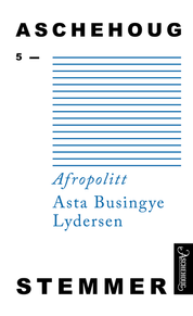 Bokomslag Afropolitt