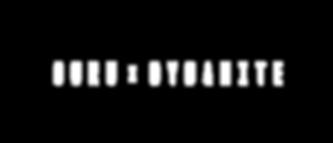 Logo22-1.png