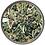 Thumbnail: Refreshing Green