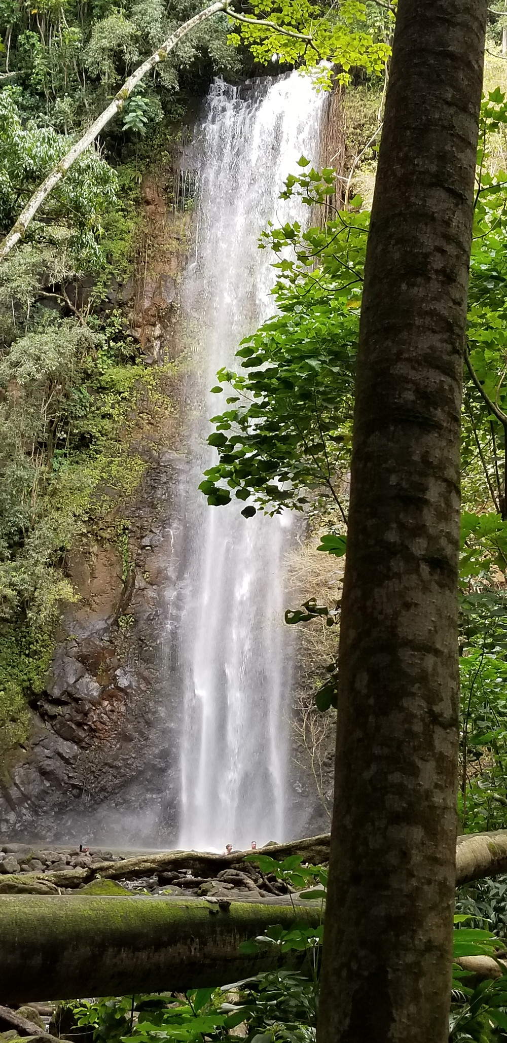 Uluwehi Falls Kauia Hawaii Wailua river