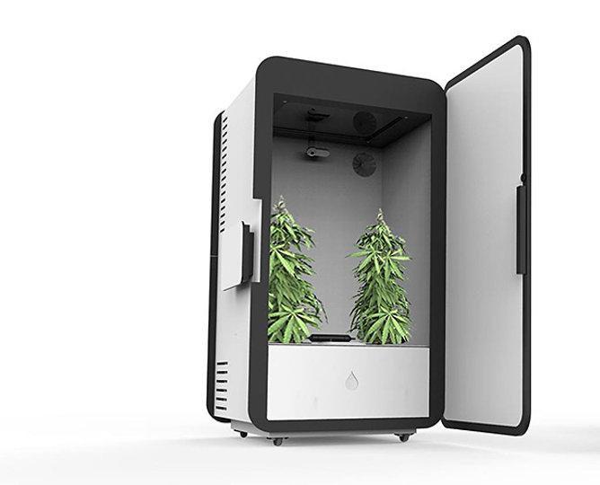 """LEAF """"Plug-n-Plant"""" Grow System"""