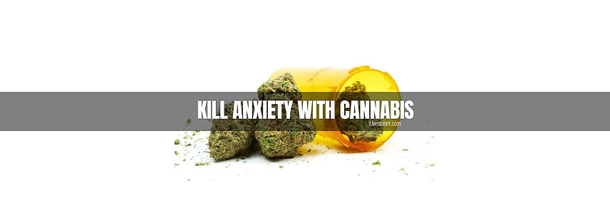 Best Marijuana Strains for Anxiety. Cure anxiety with cannabis.
