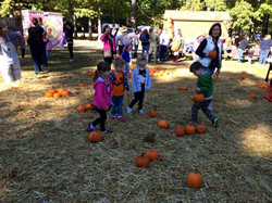 Pumpkin field trip