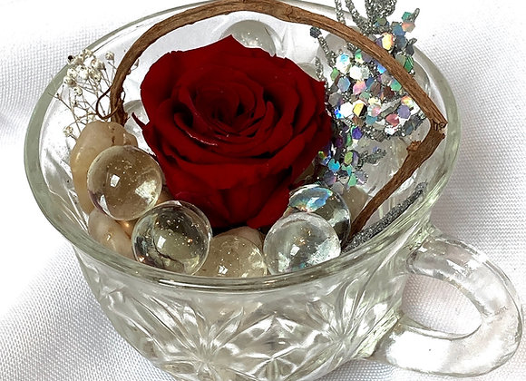 Preserved Red Rose Teacup