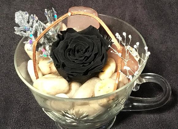 Preserved Black Rose Teacup