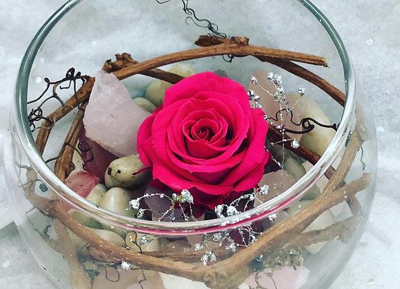 Preserved Magenta Rose Bowl