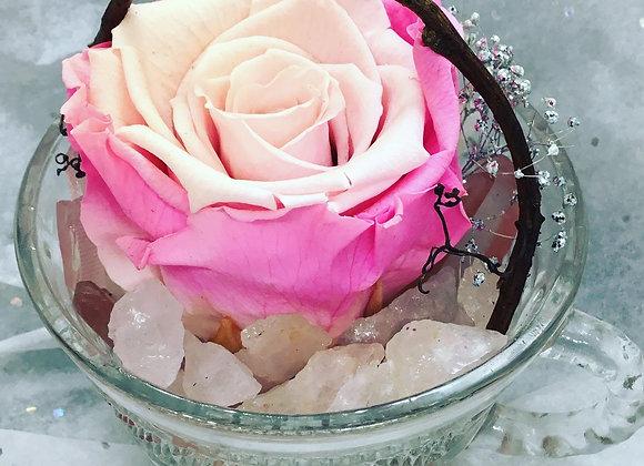 Miss Piggy Pink Preserved Rose Teacup